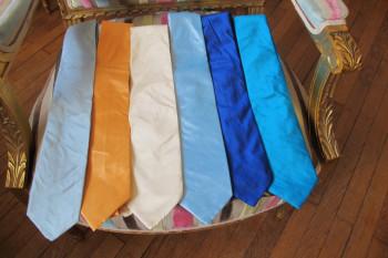 cravates classiques en soie sauvage